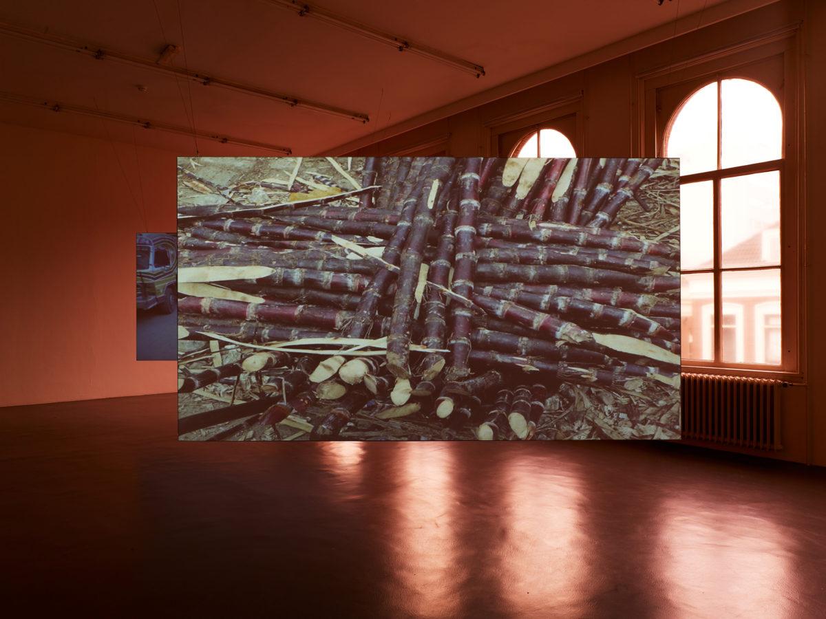 Alia Farid: a solo exhibition - Galerie Imane Farès