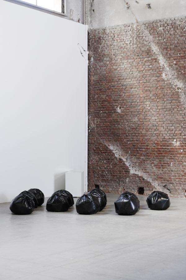 Sammy Baloji et Younès Rahmoun - Galerie Imane Farès